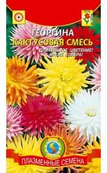 Георгина кактусовая смесь 13шт #Плазма