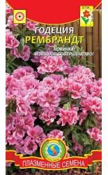 Годеция Рембрандт 0.05г #Плазма