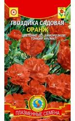 Гвоздика (садовая) Оранж 0.1г #Плазма