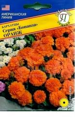 Бархатцы (отклоненные) Бонанза Оранж 10шт #Престиж