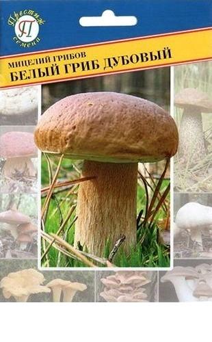 Мицелий грибов Белый гриб дубовый 50мл #Престиж