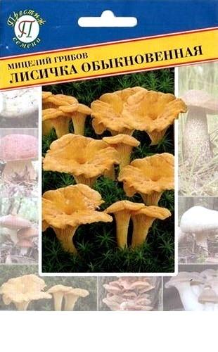 Мицелий грибов Лисичка обыкновенная 50мл #Престиж