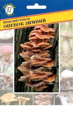 Мицелий грибов Опёнок зимний 12пал. #Престиж