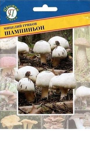 Мицелий грибов Шампиньон белый 50мл #Престиж