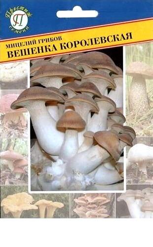 Мицелий грибов Вешенка королевская 12пал. #Престиж