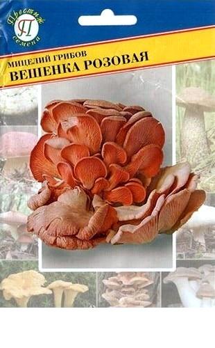 Мицелий грибов Вешенка розовая 12пал. #Престиж