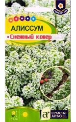 Алиссум (лобулярия) Снежный Ковер 0.1г #СеменаАлтая