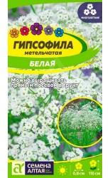 Гипсофила (метельчатая) Белая 0.2г #СеменаАлтая
