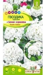 Гвоздика (турецкая) Белая Королева 0.1г #СеменаАлтая